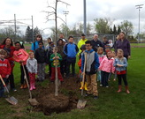 Arbor Day Tree Planting with Sunview Elementary with City of Lyndhurst at Brainard Park
