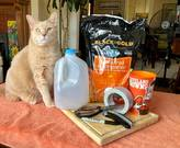 Supplies for Milk Jug Greenhouses. Cat is optional.
