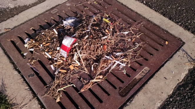 Gross to look at and gross that it ends up in our waterways thru the storm drain.